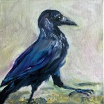 raven V, oil on canvas, 20x20